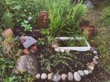 New pond area.