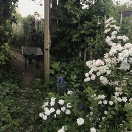 Allotment Gate