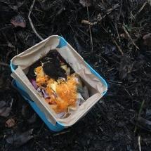 Kitchen scraps for compost